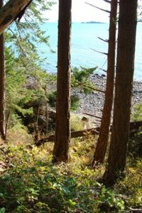 Photo for 1BR Cottage Vacation Rental in Van Anda, BC