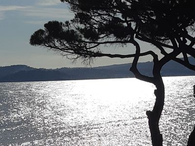 Photo for Beautiful sea view and St-Tropez. 300m downtown. Clim. Car park