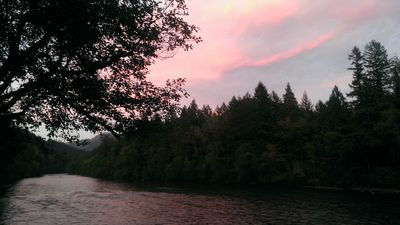 Photo for Small space living on the McKenzie River