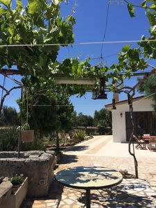 Photo for Villa Santo Stefano - Olives, starry sky and country scents