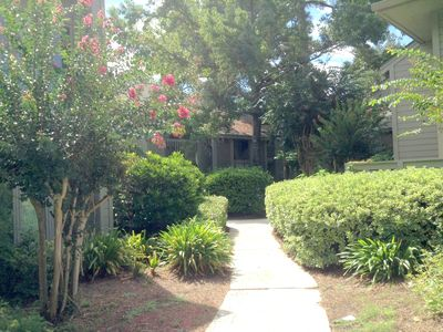 Photo for Amazing Golf & Lagoon Views in Palmetto Dunes, 1st Floor, Beach supplies