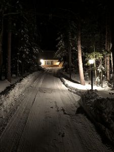 private drive nestled in the woods