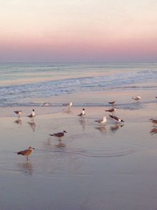 Photo for Couples retreat just steps from our white sandy beaches!