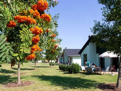 "Photo for Holiday home ""Tern"", 4 persons comfort - Seepark Auenhain *****"