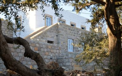 The house surrounded by 100 year old olive trees