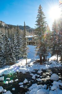 While in the Hot Tub, enjoy the relaxing sounds of the river all winter long!