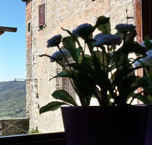 Photo for Dine Alfresco in your Private Garden Apartment in Cortona Historical Centre