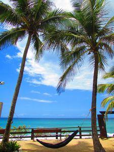 Photo for 1BR Apartment Vacation Rental in Rincon