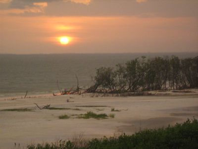 Photo for Direct Gulf of Mexico and Sunset Views- Bird Lovers' Paradise