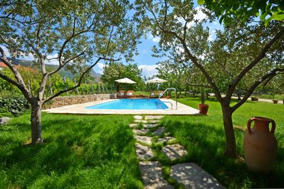 Private pool surrounded by eco farm & gardens