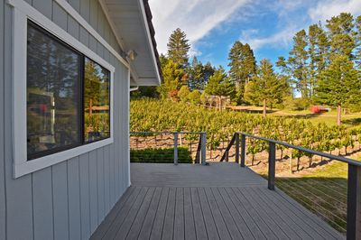 You'll never want to leave this stunning Sebastopol vacation townhome!