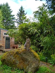 Photo for Moss Rock Retreat: Tiny Home in Huge Garden