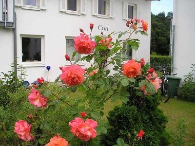 Photo for Holiday house Carl - Villa Anna in the seaside resort Zinnowitz on Usedom