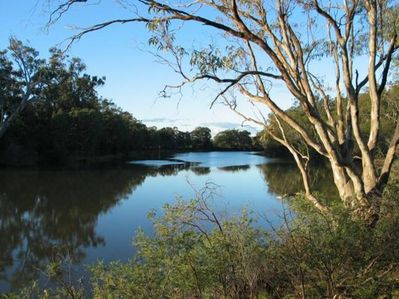 The majestic Murray River