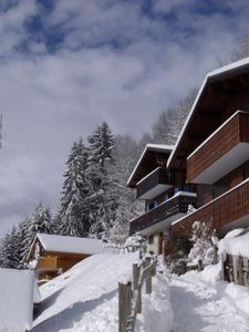 Photo for 4 bedroom accommodation in Ch?tel