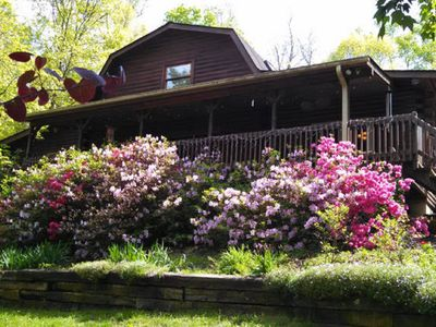 Photo for Log home minutes to downtown, West Asheville, breweries, hiking, food & shopping