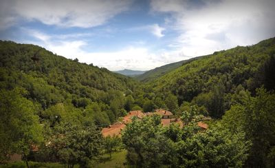 Photo for Canto del Fiume, Raggiolo, Tuscany, entire structure surrounded by greenery