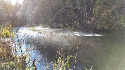 Photo for FULL HOOKUP RV SITE by The Little White Salmon River