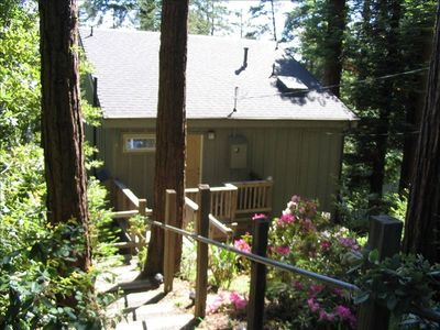 Photo for Tree House for 2 -Sunny, Clean and Affordable  with Beach Access