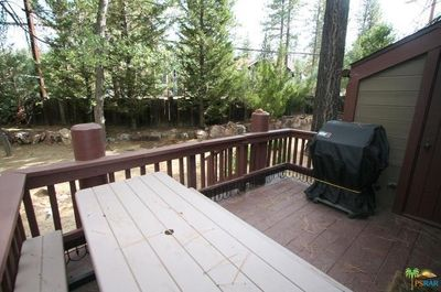 Back Deck with Propane BBQ and Picnic Table