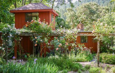 Photo for Charming home on the river in Redwood Country, family-friendly and pet-friendly