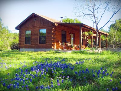 It's gorgeous around the cabin during bluebonnet season!
