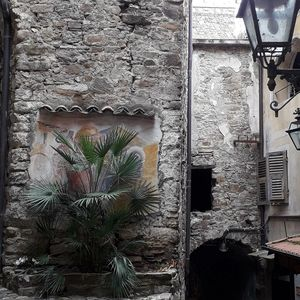 Photo for House in the ancient village of Castel Vittorio