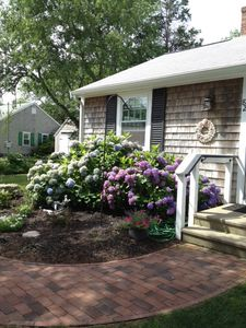 Photo for Ocean Dreams Cottage on Paines' Creek