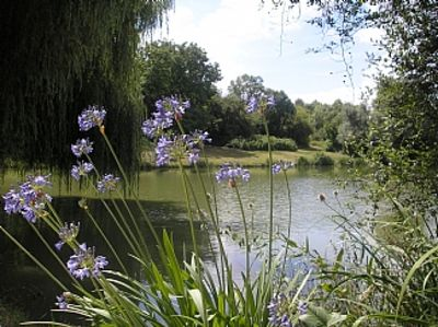 Photo for 6 person lakeside cottage Near Chalais/Aubeterre  AUGUST DATES NOW AVAILABLE
