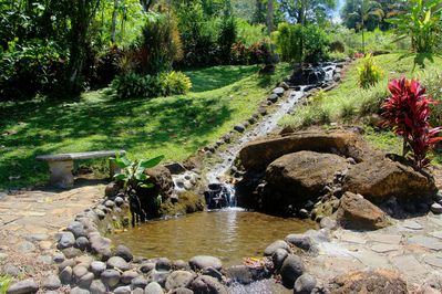 Water features and ponds along the garden path to the tropical rain forest.