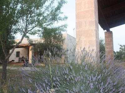 Photo for 4 bedroom holiday home Maruggio for 8 people - holiday home