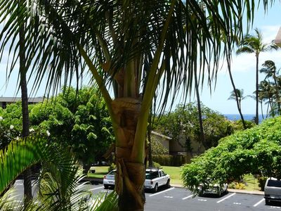 Photo for 1 Bedroom Condo at Kihei Akahi --#D107
