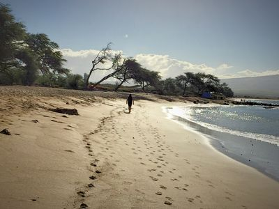 Photo for Take a walk on the beach, from this beautiful condo, at Ma'alaea Bay in Maui