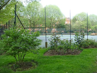 Photo for Beautiful, One Bed Kensington Apartment - Communal Gardens With Tennis Courts.
