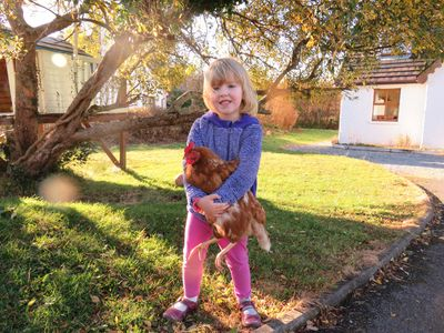Outside Letterfrack Farm Cottage with a hen