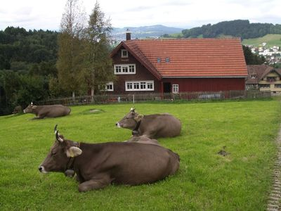 Photo for Comfortable old farmhouse Appenzeller occupancy