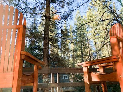 Photo for Cozy Rustic Cabin, Near Both Ski Resorts, Hiking, Zoo & Golf Course!