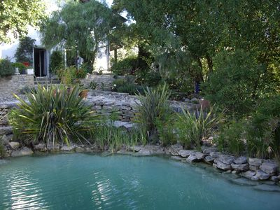 nature friendly swimming pool