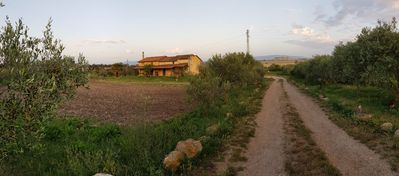 Photo for Tuscan type farmhouse, nestled in a hectare of countryside, but a few km from Oristano