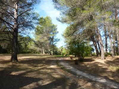 Photo for Villa 200 m2 with swimming pool 16 m and park in pine forest 1hectare closed 10 pers