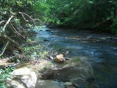 Photo for Rare Cabin with Both Whitewater Frontage and a Mountain View - No Cleaning Fee