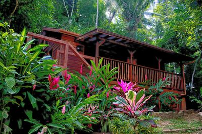 Book a Belize long term vacation rental at TreeTops, our 3-bedroom cabin!