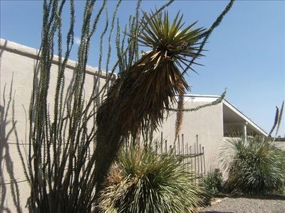 Photo for Exquisite SW Home, Tranquil Mountain Views, Convenient Location!