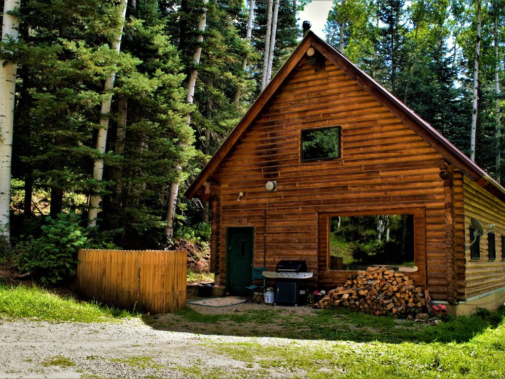 Cozy cabin in the woods at columbine lake just 1 mile from for Ski cabin rentals colorado