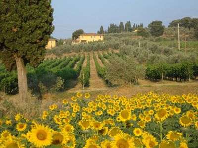 Photo for Authentic farmstay for family & friends with Pool, among Vineyards & Olive trees