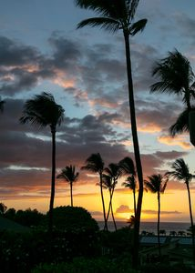 Photo for MORE ALOHA FOR YOUR MONEY !!! OCEAN VIEW !!!