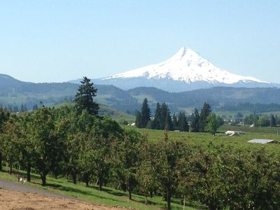 Photo for Amazing Mt. Hood and Valley Views at Ziphaus!