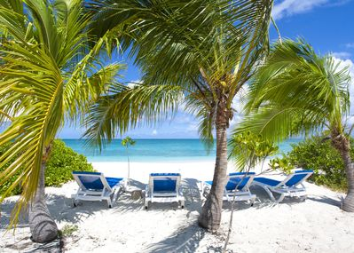 Your own lounge chairs under our coconut trees