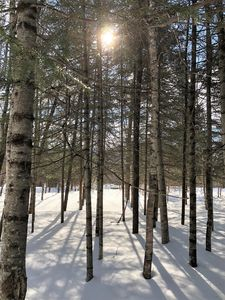 Photo for Stunning - 2 min from MT Tremblant South with spa
