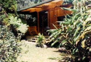 A Honeymoon Cottage (hidden in the rain forest)